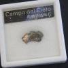 อุกาบาตแคมโปเดล Cielo ( Campo Del Cielo )