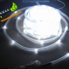 ไฟสายยางโซล่าเซลล์ สีขาว 12 เมตร