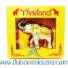 ช้างกล่องทอง Size S (Pre-Order คละสี)