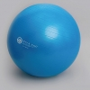 Gym Ball (55cm - Deep Blue)