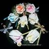 ดอกกุหลาบตูมพิเศษ