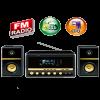 SPEAKER MUSIC DJ 100FK-10