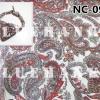 NC091 ผ้าพันคอลายเพลสลี่หยดน้ำ ผืนใหญ่ใช้คาดหัว พันคอ