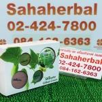 shinete gift set ชิเนเต้ เซต โปร 1 ฟรี 1 SALE 67-80%