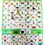 แผ่นเรียนรู้ตัวอักษรภาษาไทย แผ่นการเรียนรู้สอนภาษาไทย-ภาษาอังกฤษ แผ่นสอนภาษา
