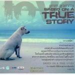 CD, Based on a true story(2CD)