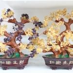 ต้นไม้หินมงคล ปรับฮวงจุ้ย ของขวัญปีใหม่