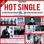 Hot Single Vol.24 (Karaoke DVD)