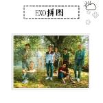 จิ๊กซอ+กรอบรูป EXO THE WAR - KOKOBOP