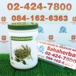 นิวทรีไลท์ ออล แพลนท์ Nutrilite All Plant SALE 60-80% ฟรีของแถมทุกรายการ
