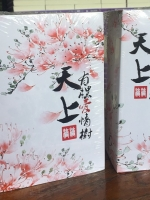 สวรรค์ลิขิตรัก นิยายจีนแปลจากนิยายขายดีติดอันดับของจีน โดยจวงจวง