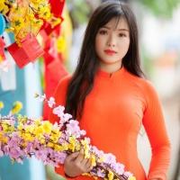 ชุดเวียดนามหญิง สีล้วน(งานสั่งตัดพิเศษ)