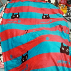 ผ้าห่มนาโนส่ง