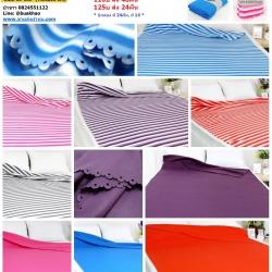 ผ้าห่มฟลีซ 55x80นิ้ว ผืนละ 100 บาท (140*200ซม) 600กรัม ส่ง 72ผืน