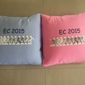 หมอนผ้าห่ม ผ้าทีซี 16*16นิ้ว (ขนาดกาง 100*150ซม) ใบละ 165บาท ส่ง 100ใบ (งานไทย แพคถุง ทุกชิ้น)