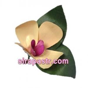 ดอกกล้วยไม้ราตรี-ประเทศอินโดนีเซีย (ช่อดอกไม้ติดเสื้อ) **สินค้าจำนวนจำกัด**