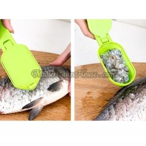 ที่ขอดเกล็ดปลา