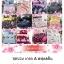 ชุดผ้านวม+ผ้าปูที่นอน เกรด A พิมพ์ลาย 6ฟุต 6ชิ้น เริ่มต้น 295 บาท thumbnail 38