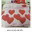 ชุดผ้านวม+ผ้าปูที่นอน เกรด A พิมพ์ลาย 6ฟุต 6ชิ้น เริ่มต้น 295 บาท thumbnail 19