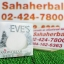 EVE's Snowcream White Soap โปร 1 ฟรี 1 SALE 63-85% สบู่ครีมขาว thumbnail 1