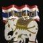 เสื้อลายช้างธงชาติ Thailand