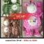 หมอนผ้าห่ม ตุ๊กตา งานจีน thumbnail 18