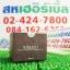 Hybeauty Himalaya Black Tea Eye Gel โปร 1 ฟรี 1 SALE 62-84% หิมาลายา แบล็ค ที อายเจล thumbnail 1