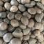 ถั่วดาวอินคา (100 กรัม) thumbnail 3