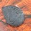 แอมโมไนต์ไพไรต์ ( Pyrite Ammonite ) thumbnail 4