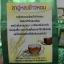 ชาอู่หลงข้าวหอม (บรรจุซองฟลอยด์สูญญากาศ 2 ขีด) thumbnail 9