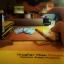 Samsung S8 (เต็มจอ/Nano) - GORILLA ฟิลม์ นาโน NANO TECH FILM แท้ thumbnail 7