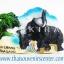 ที่ติดตู้เย็น ช้างไทย แบบ 31 thumbnail 1