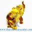 ของพรีเมี่ยม ของที่ระลึกไทย ช้าง แบบ 15 Size S สีทอง-น้ำตาล thumbnail 4