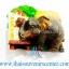 ที่ติดตู้เย็น ช้างไทย แบบ 97 thumbnail 1