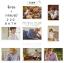 จิ๊กซอ+กรอบรูป BTS LOVE YOURSELF -ระบุสมาชิก- thumbnail 1