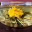 ชาดอกไม้บาน 6 ดอก thumbnail 3
