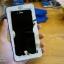 iPhone 6, 6s - ฟิลม์ กระจกนิรภัย Privacy (กันเสือก) P-One 9H 0.26m ราคาถูกที่สุด thumbnail 1