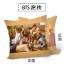 หมอน BTS LOVE YOURSELF (40x40cm) thumbnail 1