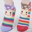 ถุงเท้า (พรีออเดอร์) thumbnail 2