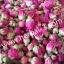 ขายส่งชาดอกกุหลาบคัดพิเศษเกรดA (อบแห้ง) 1 กก thumbnail 6