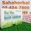 เวกิ เวร่า Vegi Vela โปร 1 ฟรี 1 SALE 67-83% เครื่องดื่มผงจากใบอ่อนข้าวสาลี thumbnail 1