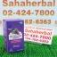 Biosis Red Grapeseed 38000mg โปร 1 ฟรี 1 SALE 67-80% ไบโอซิส เกรพซีด thumbnail 1