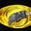 จี้อุกาบาต กีเบียน Meteorite Gibeon thumbnail 3