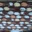 ผ้าห่มนาโน 5ฟุต ผืนละ 62 บาท ส่ง 100ผืน thumbnail 6
