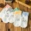 Cats socks ถุงเท้าลายแมวน่ารัก (3 คู่ 100 บาท) thumbnail 1