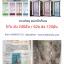 ม่านประตู แม่เหล็กกันยุง ชุดละ 62บ ส่ง 120ชุด thumbnail 1