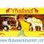 ของพรีเมี่ยม ของที่ระลึกไทย ช้าง vs รถตุ๊กตุ๊ก แบบ 12 Size S สีเงินทอง thumbnail 4