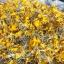 ชาดอกดาวเรือง (กลีบ+เกสร) thumbnail 12
