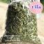 หญ้าหวานอบแห้ง 100% (กิโล) thumbnail 1