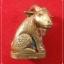 แพะเหลียวหลัง นั่งค่อมตอ (แพะรุ่นแรก) หลวงปู่อาด วัดบุญสัมพันธ์ จ.ชลบุรี เนื้อทองแดง thumbnail 1